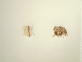 Pyrographs, Cofaspace, University of NSW  College of Fine Arts